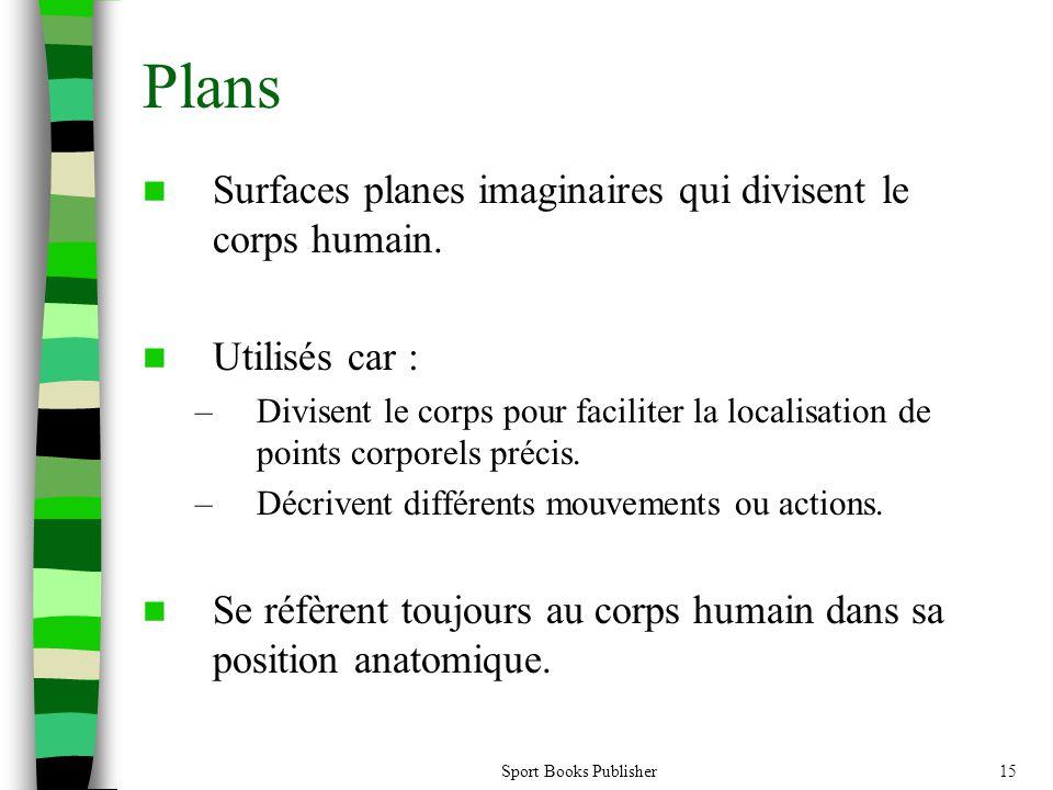 Plans Surfaces planes imaginaires qui divisent le corps humain.