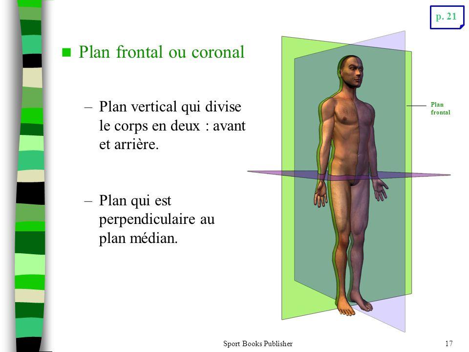 Plan frontal ou coronal