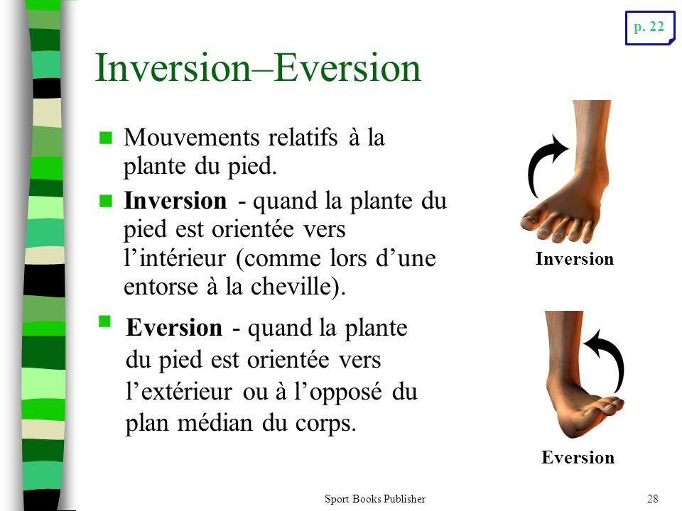Inversion–Eversion Mouvements relatifs à la plante du pied.