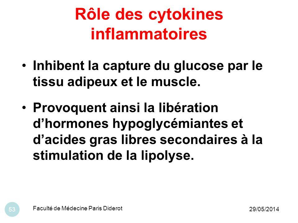 Rôle des cytokines inflammatoires