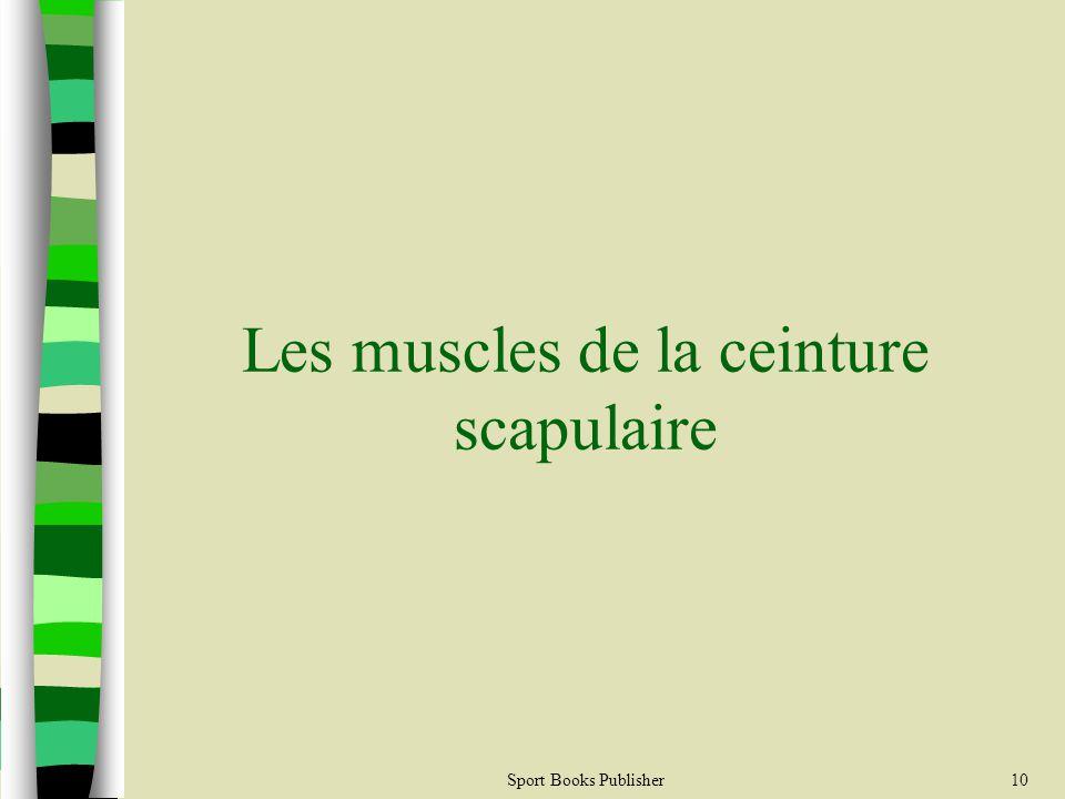 Les muscles de la ceinture scapulaire