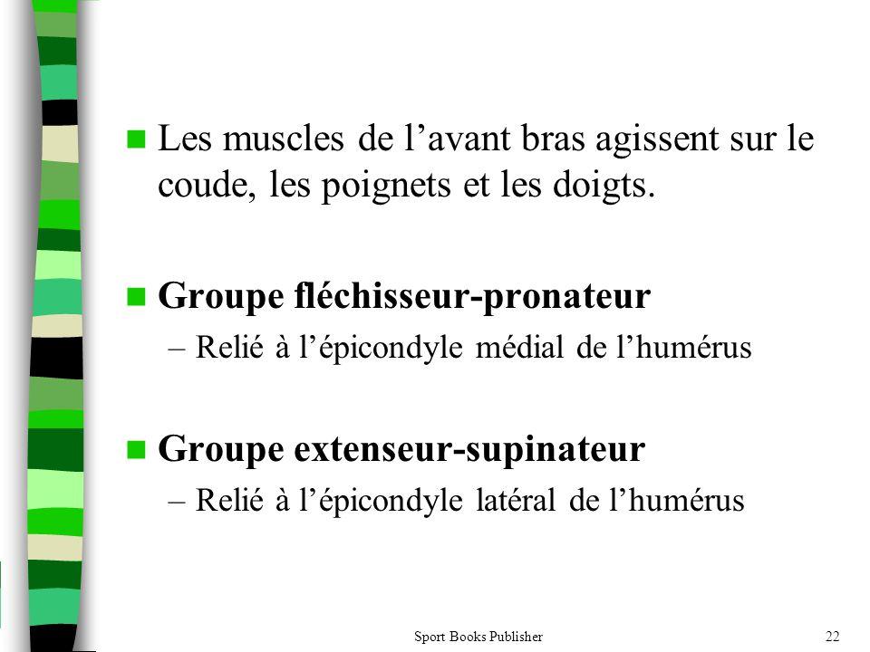 Groupe fléchisseur-pronateur