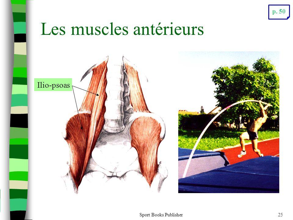 Les muscles antérieurs