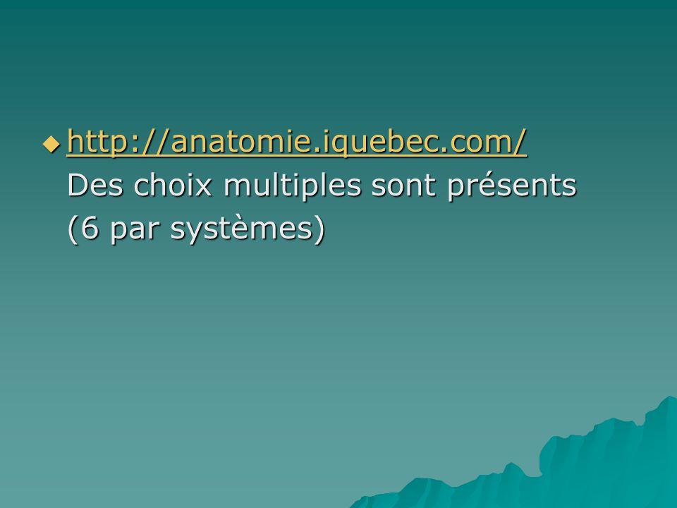http://anatomie.iquebec.com/ Des choix multiples sont présents (6 par systèmes)