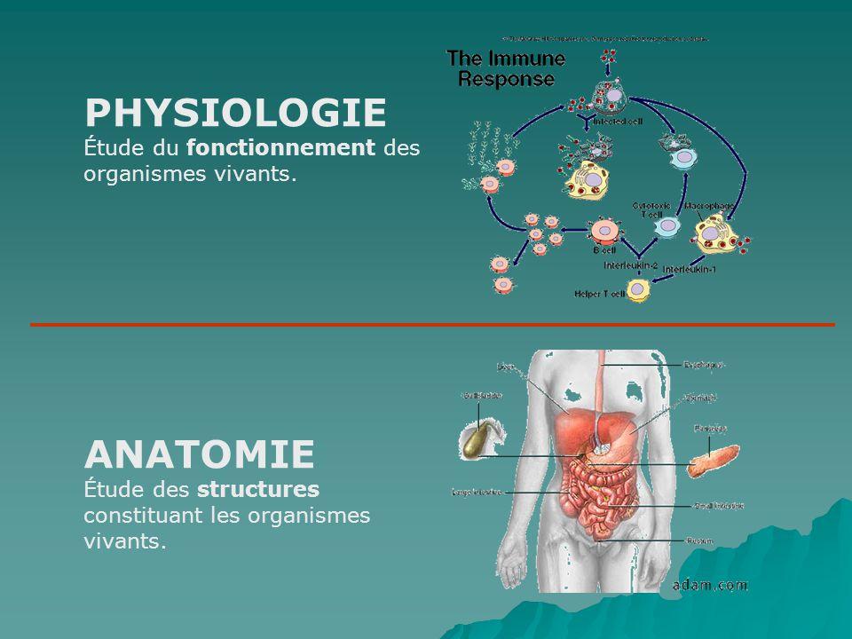 PHYSIOLOGIE Étude du fonctionnement des organismes vivants.