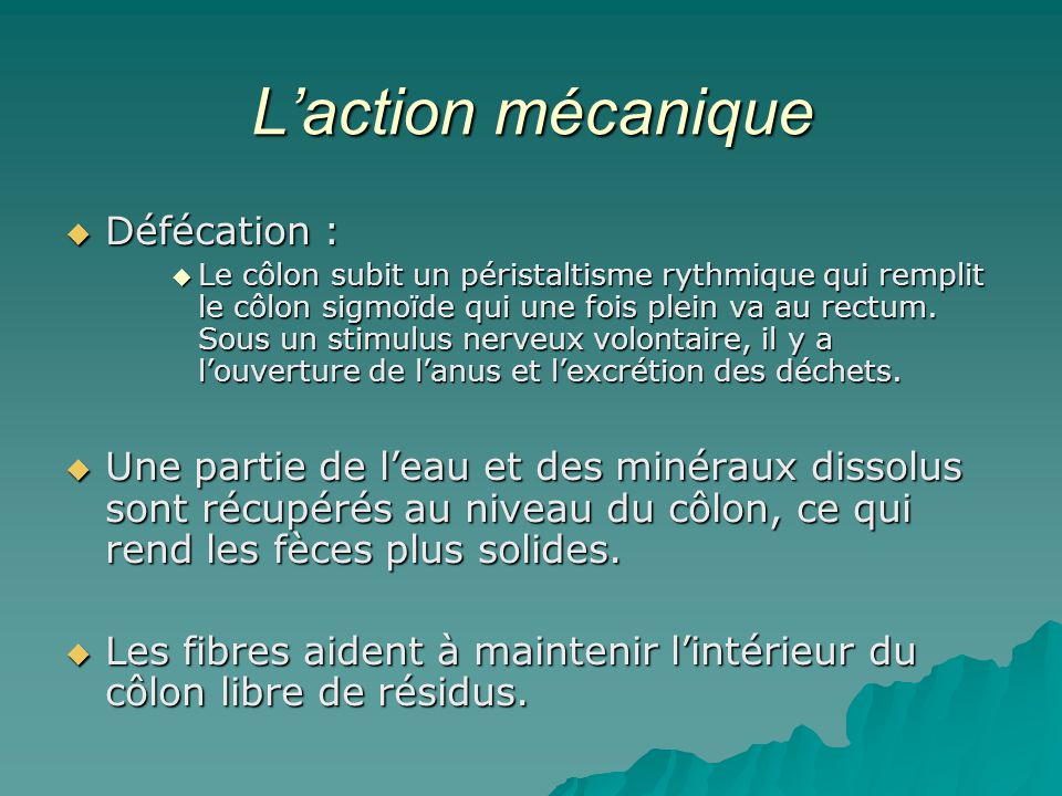 L'action mécanique Défécation :