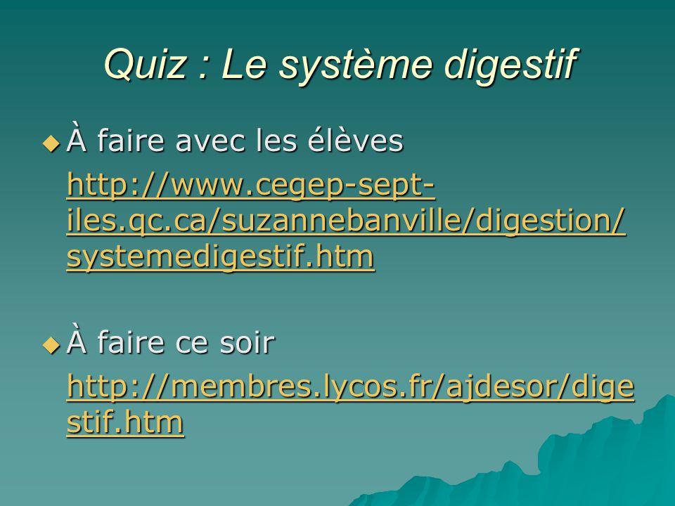 Quiz : Le système digestif