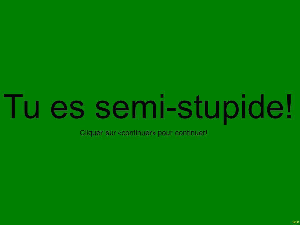 Tu es semi-stupide! Cliquer sur «continuer» pour continuer! GO!