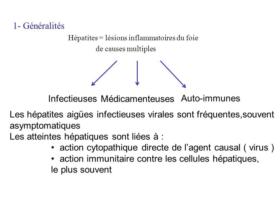 Les hépatites aigües infectieuses virales sont fréquentes,souvent