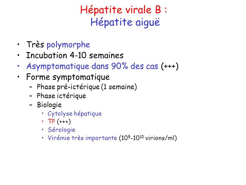 Hépatite virale B : Hépatite aiguë Très polymorphe