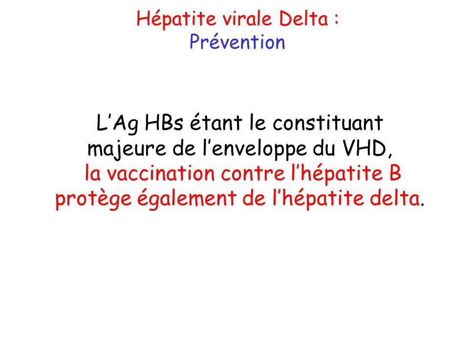 L'Ag HBs étant le constituant majeure de l'enveloppe du VHD,