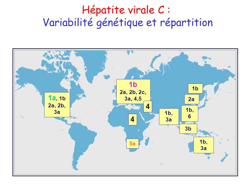 Variabilité génétique et répartition