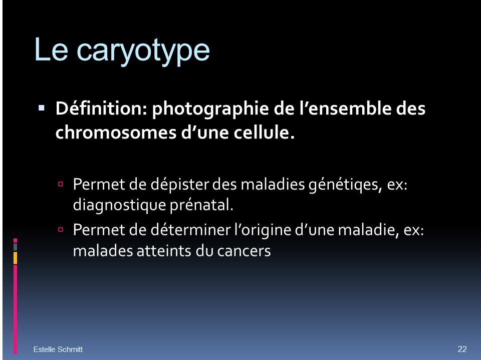 Le caryotype Définition: photographie de l'ensemble des chromosomes d'une cellule.