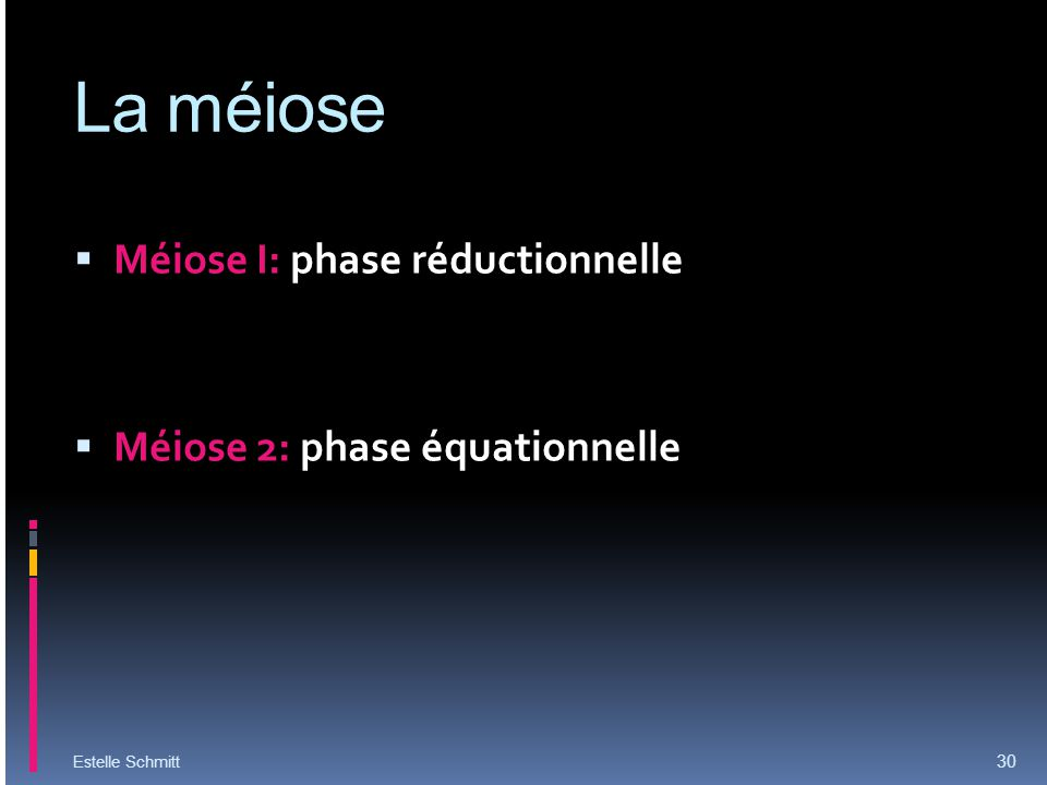 La méiose Méiose I: phase réductionnelle Méiose 2: phase équationnelle
