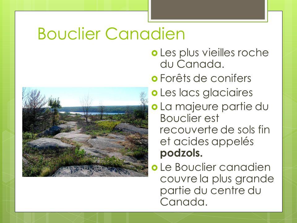 Bouclier Canadien Les plus vieilles roche du Canada.