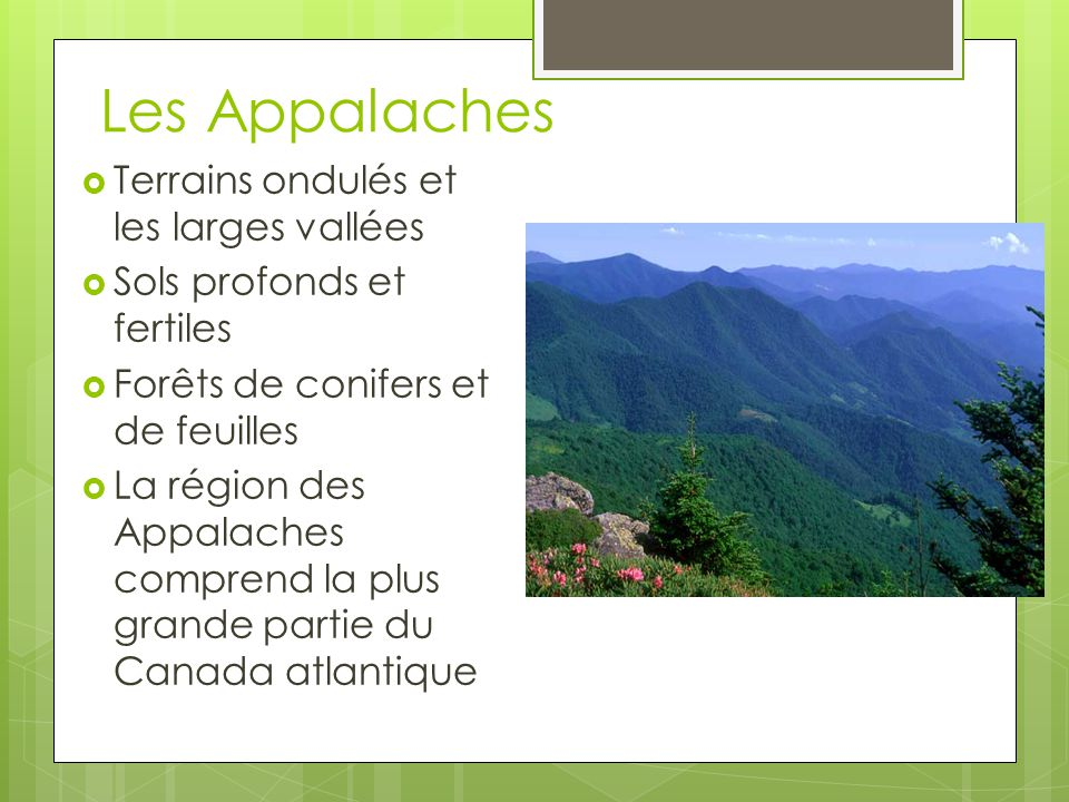 Les Appalaches Terrains ondulés et les larges vallées