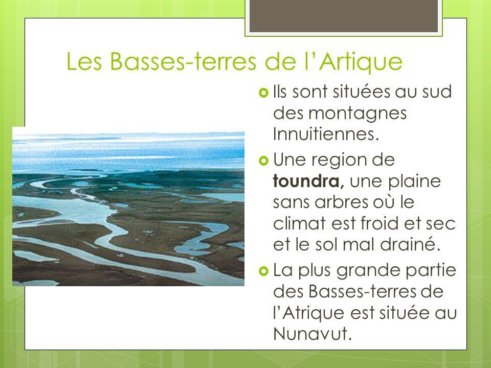 Les Basses-terres de l'Artique