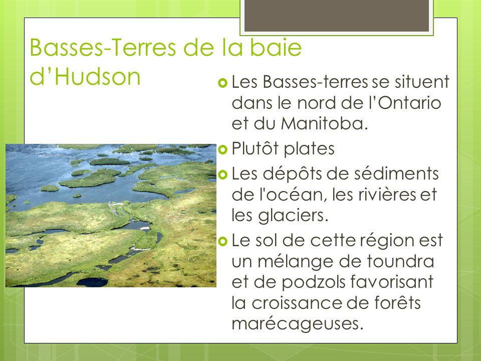 Basses-Terres de la baie d'Hudson