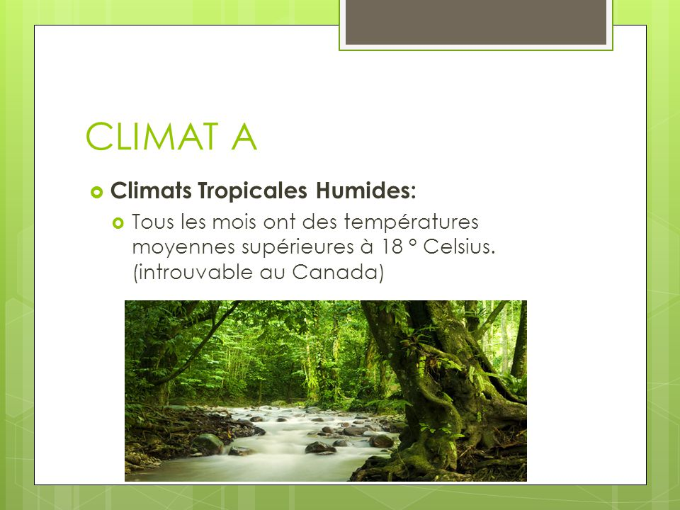 CLIMAT A Climats Tropicales Humides:
