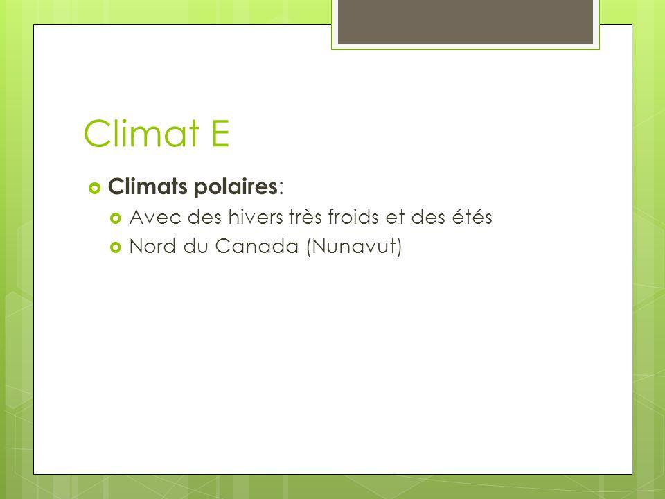 Climat E Climats polaires: Avec des hivers très froids et des étés