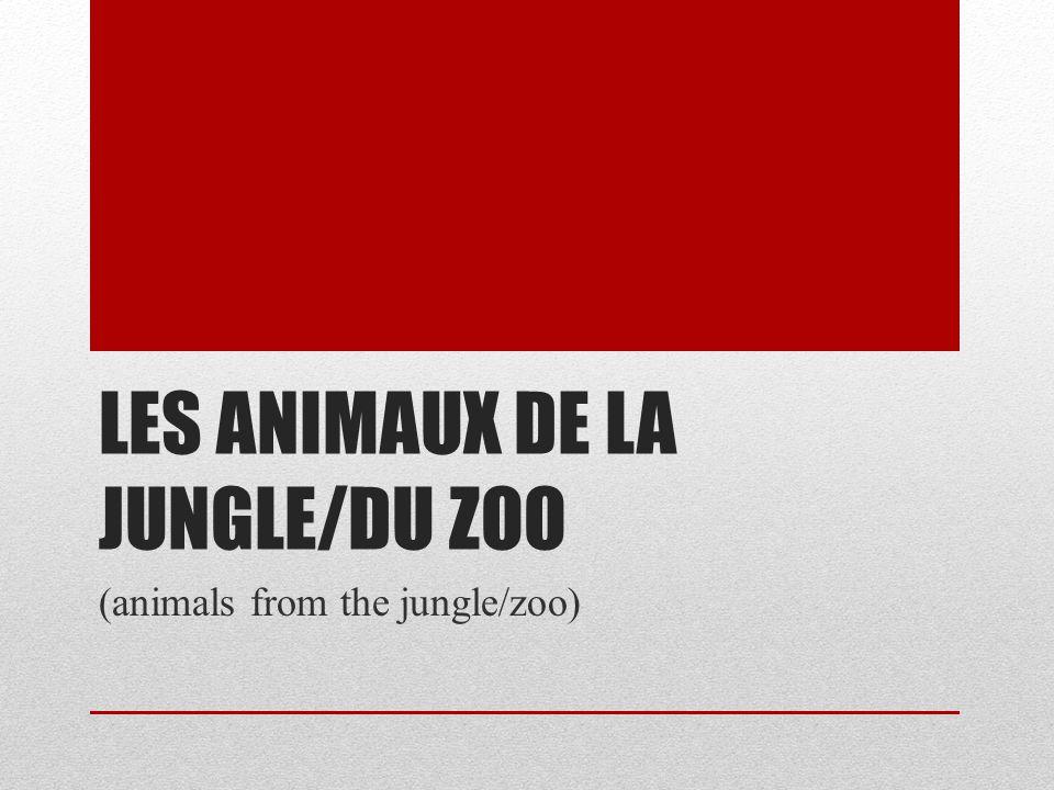 Les animaux de la jungle/du zoo