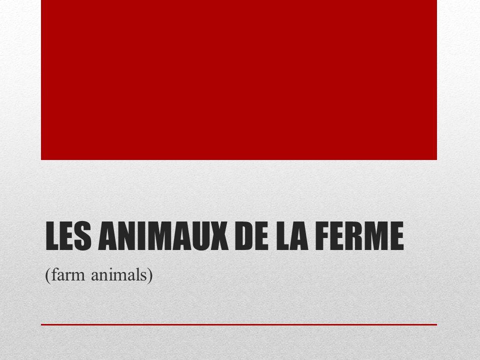 Les animaux de la ferme (farm animals)