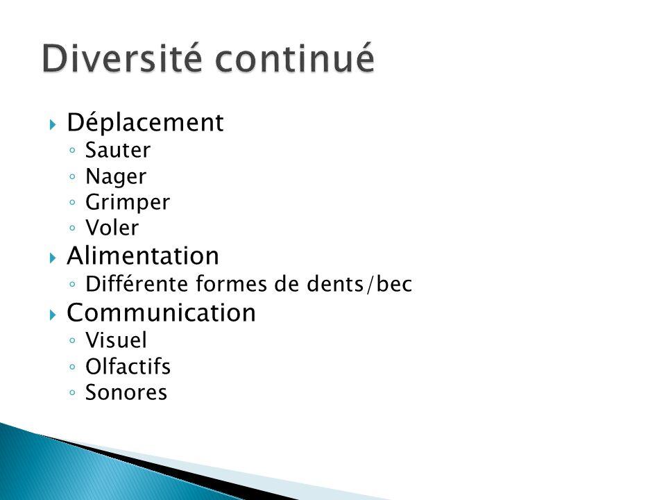 Diversité continué Déplacement Alimentation Communication Sauter Nager