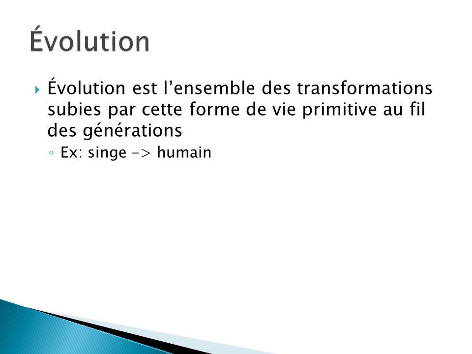 Évolution Évolution est l'ensemble des transformations subies par cette forme de vie primitive au fil des générations.
