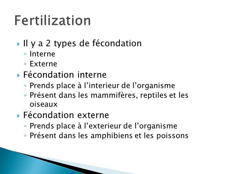 Fertilization Il y a 2 types de fécondation Fécondation interne