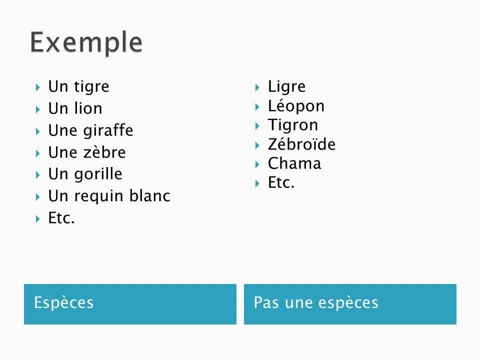 Exemple Un tigre Un lion Une giraffe Une zèbre Un gorille