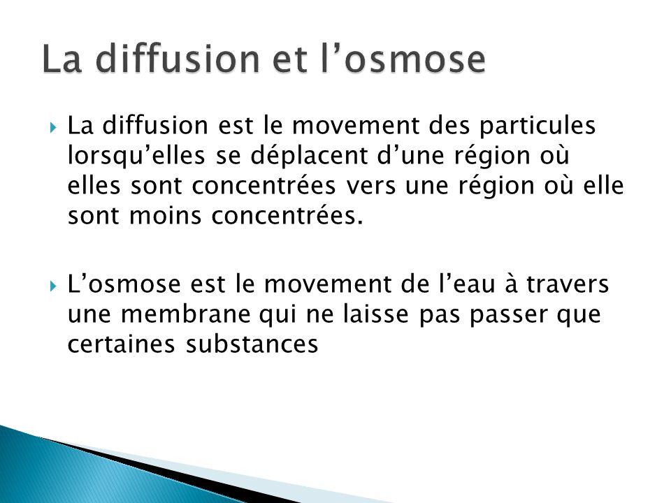 La diffusion et l'osmose