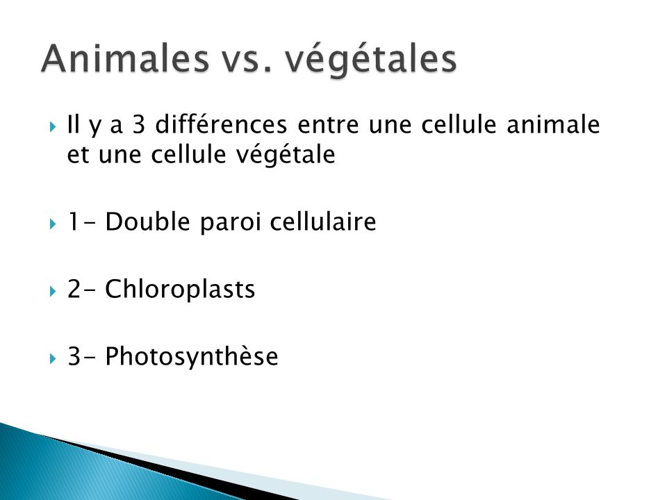 Animales vs. végétales Il y a 3 différences entre une cellule animale et une cellule végétale. 1- Double paroi cellulaire.