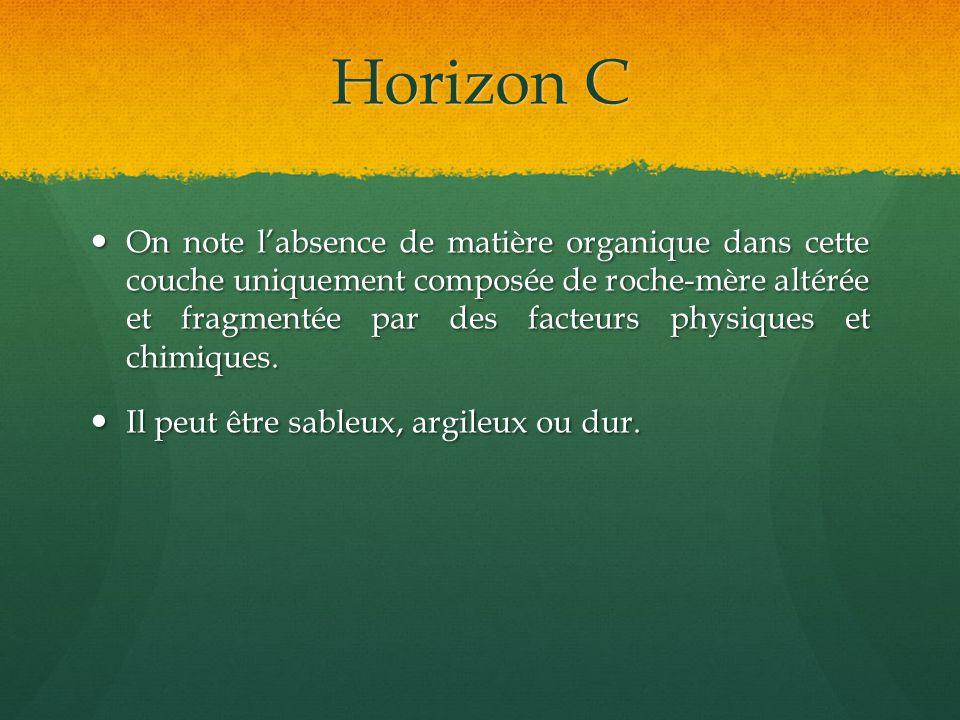 Horizon C