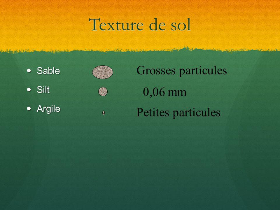 Texture de sol Grosses particules 0,06 mm Petites particules Sable