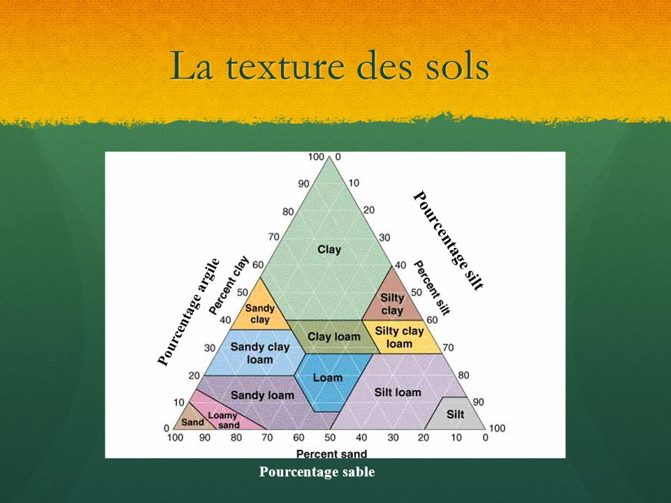 La texture des sols Pourcentage silt Pourcentage argile