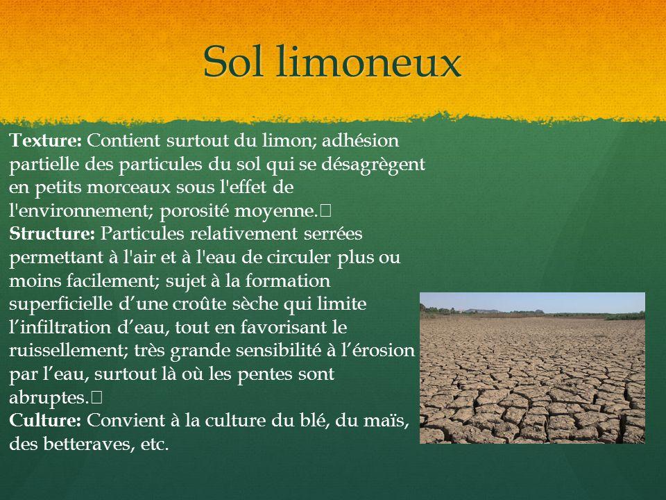 Sol limoneux