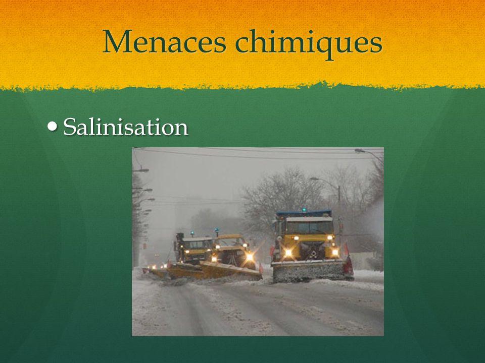 Menaces chimiques Salinisation