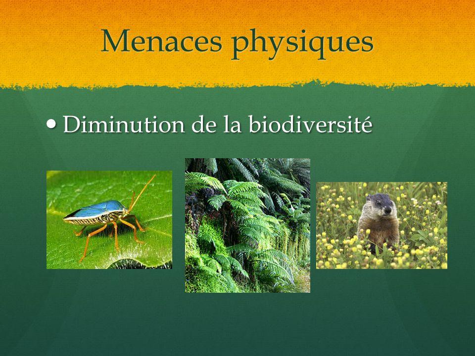 Menaces physiques Diminution de la biodiversité