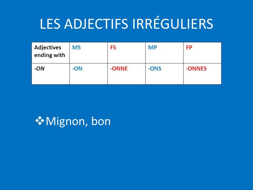 LES ADJECTIFS IRRÉGULIERS