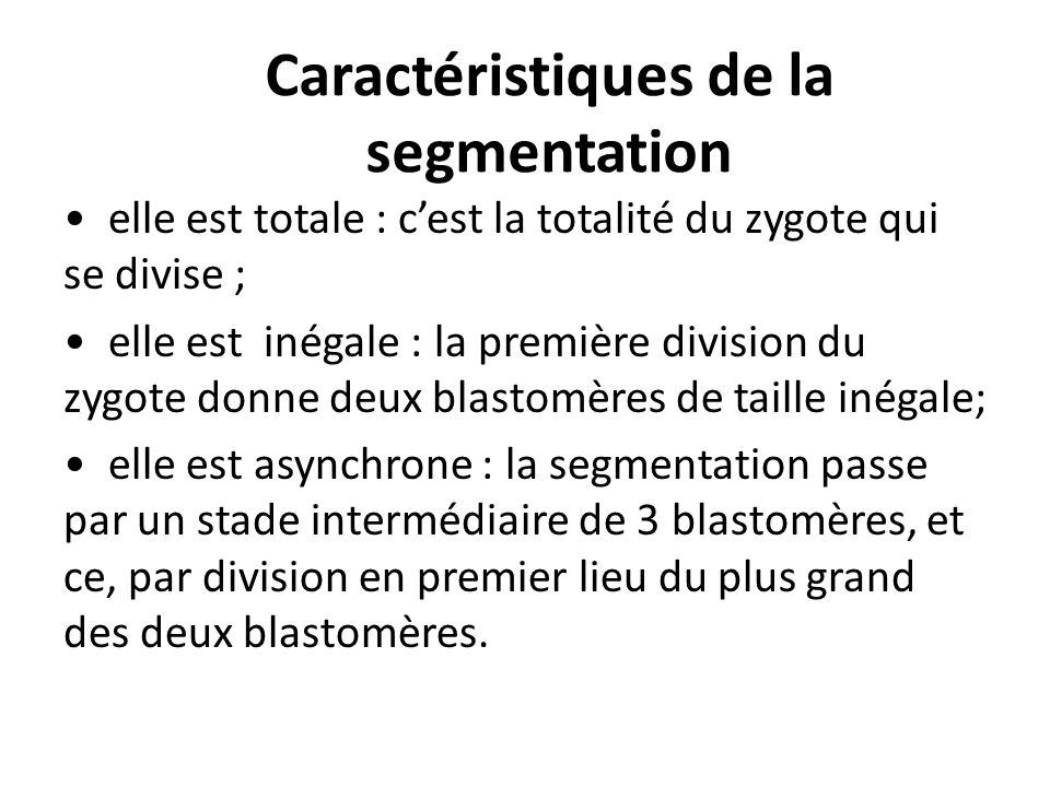 Caractéristiques de la segmentation