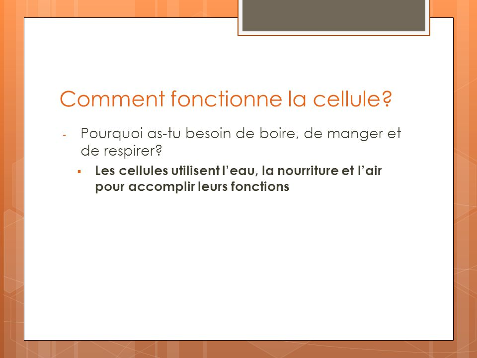 Comment fonctionne la cellule
