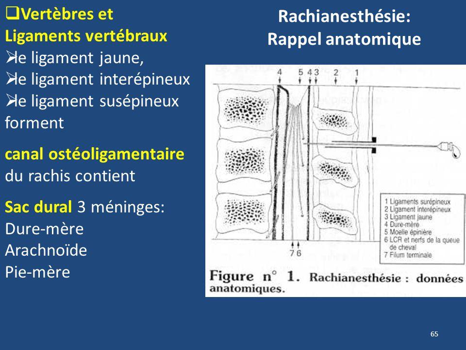 Rachianesthésie: Rappel anatomique
