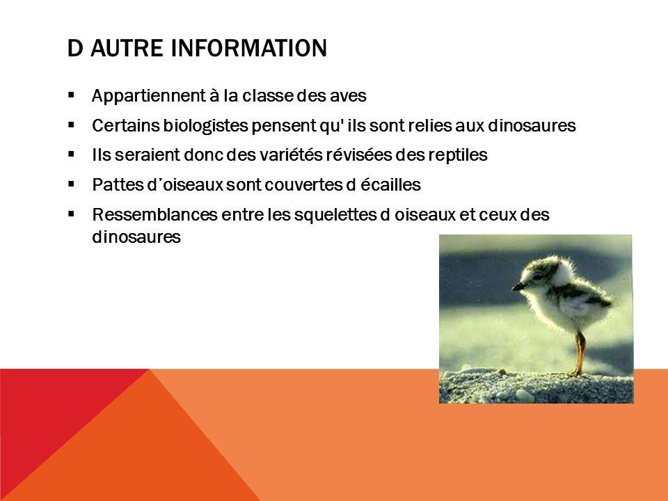 D autre information Appartiennent à la classe des aves