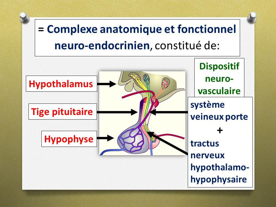 Dispositif neuro- vasculaire