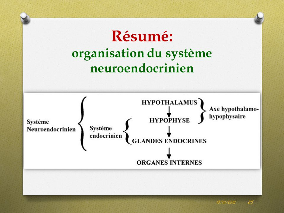 Résumé: organisation du système neuroendocrinien