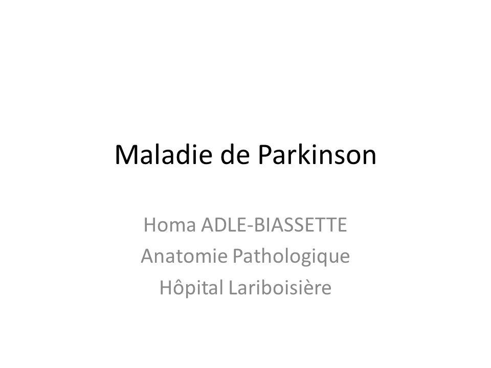 Homa ADLE-BIASSETTE Anatomie Pathologique Hôpital Lariboisière