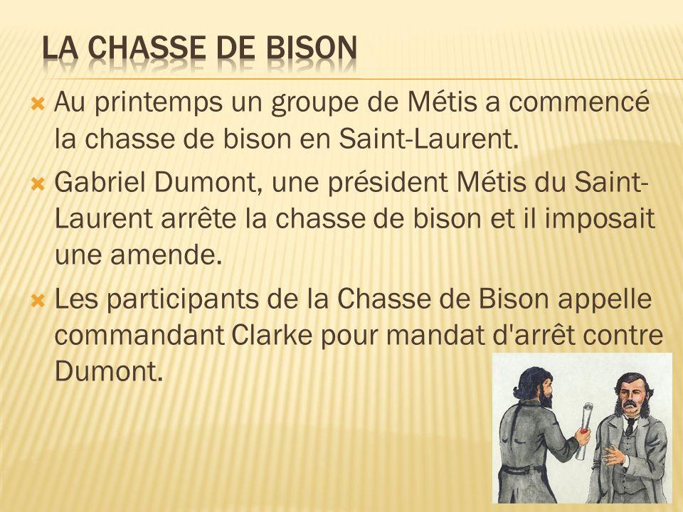 La Chasse de Bison Au printemps un groupe de Métis a commencé la chasse de bison en Saint-Laurent.