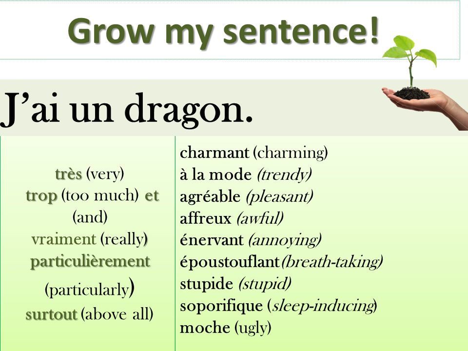 J'ai un dragon. Grow my sentence! charmant (charming)