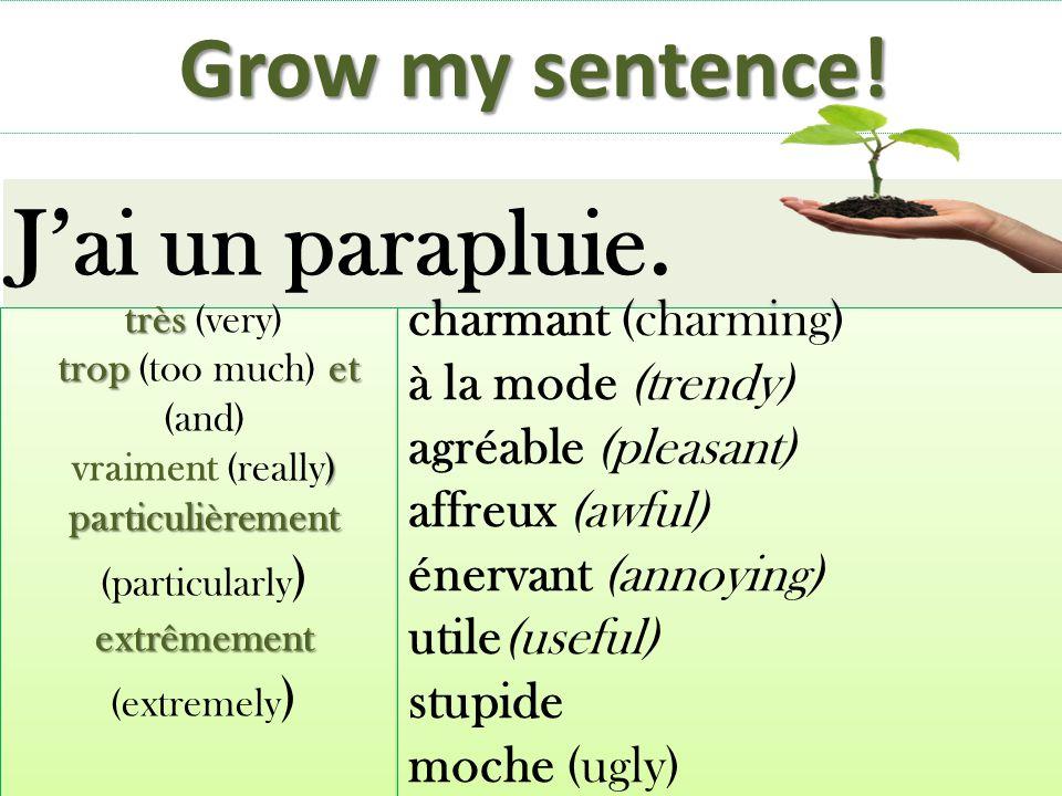 J'ai un parapluie. Grow my sentence! charmant (charming)