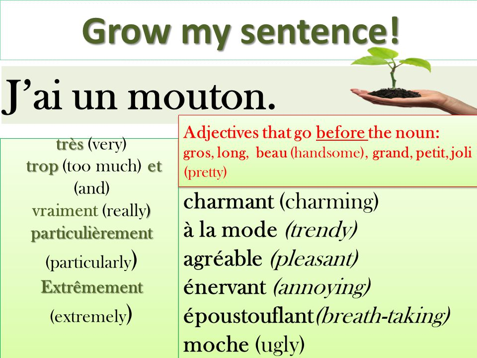 J'ai un mouton. Grow my sentence! charmant (charming)